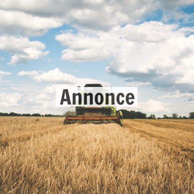 Hvad håndværkere kan lære af innovation indenfor landbruget